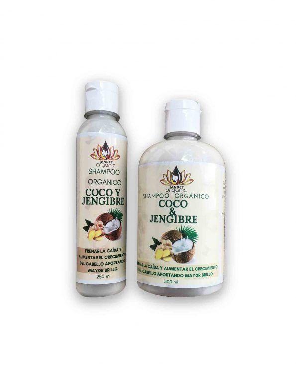 jandet-organic-Shampoo-coco-y-jengibre